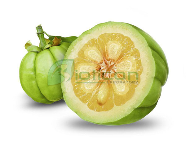 สารสกัดจากผลส้มแขก (Garcinia Cambogia) - รับผลิตอาหารเสริม
